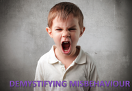 Demystifying misbehaviour: How to keep your kids in line without damaging their self-worth and spirit.